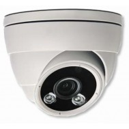 Telecamera Dome IP PoE IR HD 2MP da Soffitto/Parete IP66 AVM420U - Avtech - IC-AVM420U
