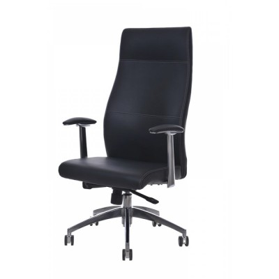 Executive Armchair with Armrests, Black  - Techly - ICA-CT 051BK-2