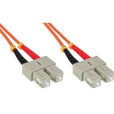 SC/SC Multimode 62.5/125 OM1 1m Fiber Optics Cable - Techly Professional - ILWL D6-B-010-2