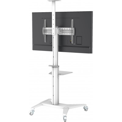 """Floor Stand for TV from 37"""" to 70"""" White - Techly - ICA-TR48W-1"""
